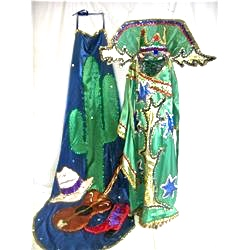 #KharolinaCostume #Fancy #JosephTechnicolorDreamcoat 13412126_1m